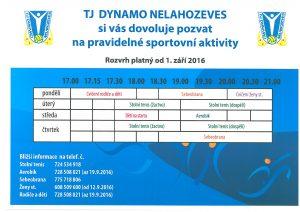 TJ Dynamo Nelahozeves
